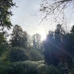 l_2021-10-18-16-17-06 Bestattungen Dunker - Kondolenzbücher - Lucas Wendl