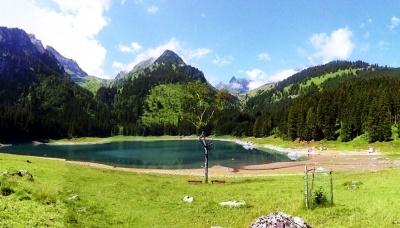 Wiesenbestattung in der Schweiz