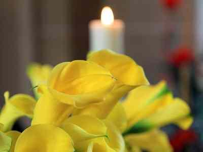 trauerhalle_2204_3724 Bestattungen Dunker | Bestattung & Trauerfeier